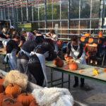 Workshop Halloween Pompoenen