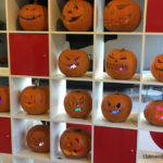 Workshop HalloweenPumpkins with Dr. Reddy