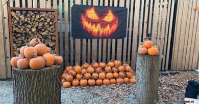 Halloween op Kasteel Duivenvoorde