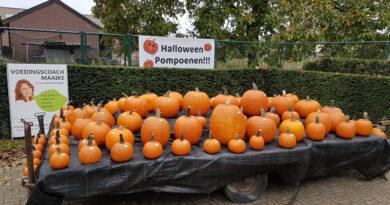 Bonten Pompoenen Limburg